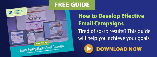 how-to-develop-effective-emai-campaigns graphic